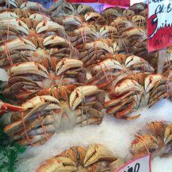 Well Call Fish and shellfish recipes