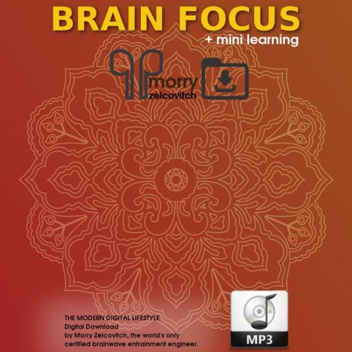 Brain Focus by Morry Zelcovitch