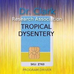 tropical dyssentery