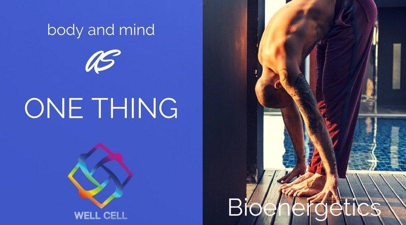 Explaining Bioenergetics