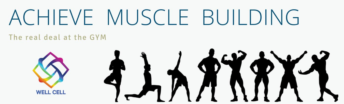 Achieve Muscle Building