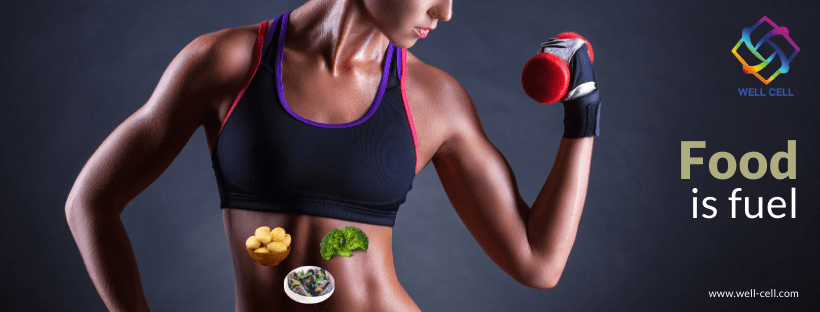 Gain energy with food