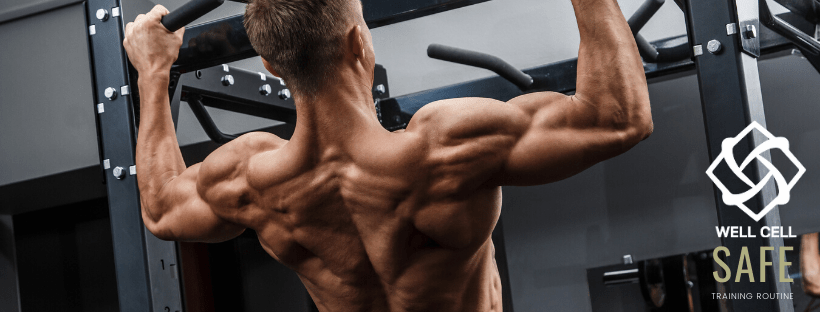 A Healthy Back Is Your Foundation Of Fitness