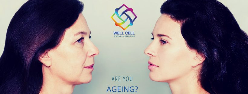 Wrinkles and skin aging