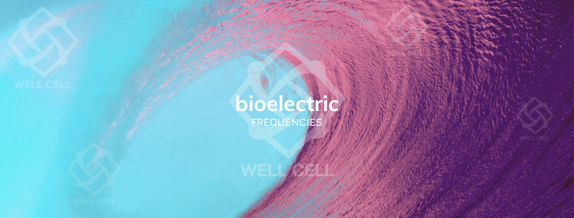 Bio-electric Frequencies How it Affects You
